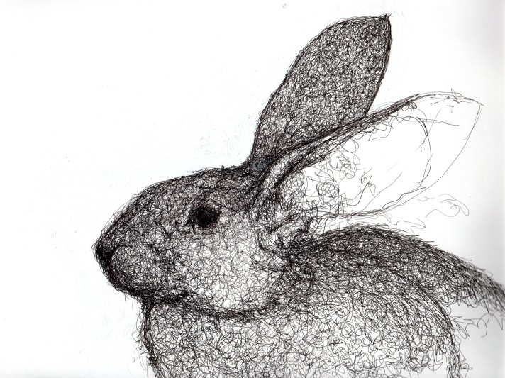 Rabbit (detail)